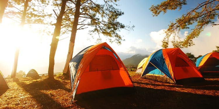 Three camping tents lined up outdoors with trees surrounding